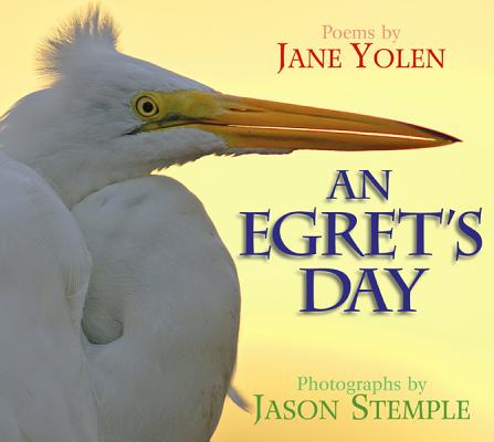 An Egret's Day By Yolen, Jane/ Stemple, Jason (PHT)